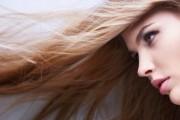 Die Harrpflege von Sisley: Shampoo, Haarkur und Spülung Extrait Phyto – Aromatique
